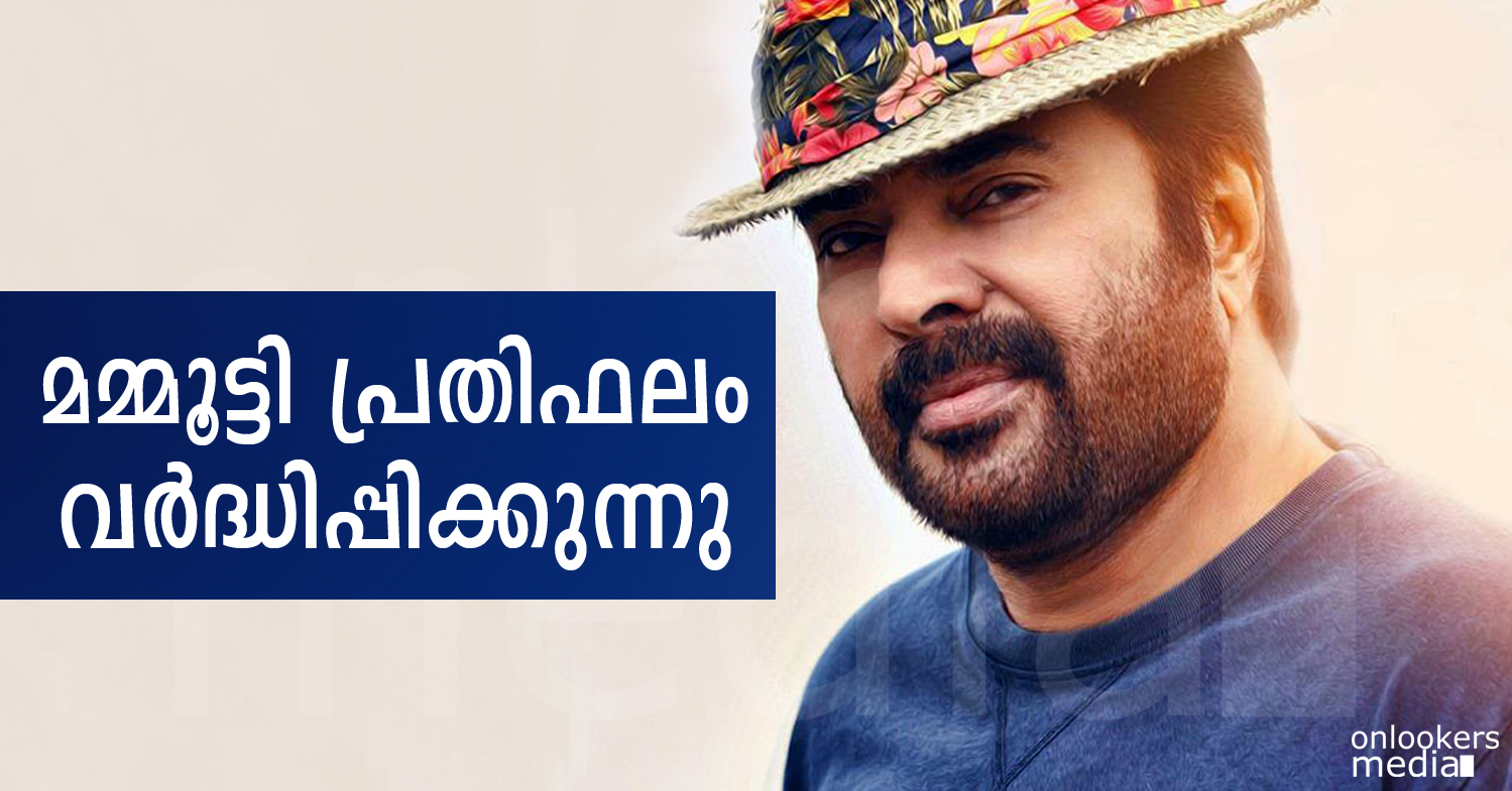 Mammootty to increase his remuneration from now on-Mammootty 2015 Movies-Hit-Onlookers Media