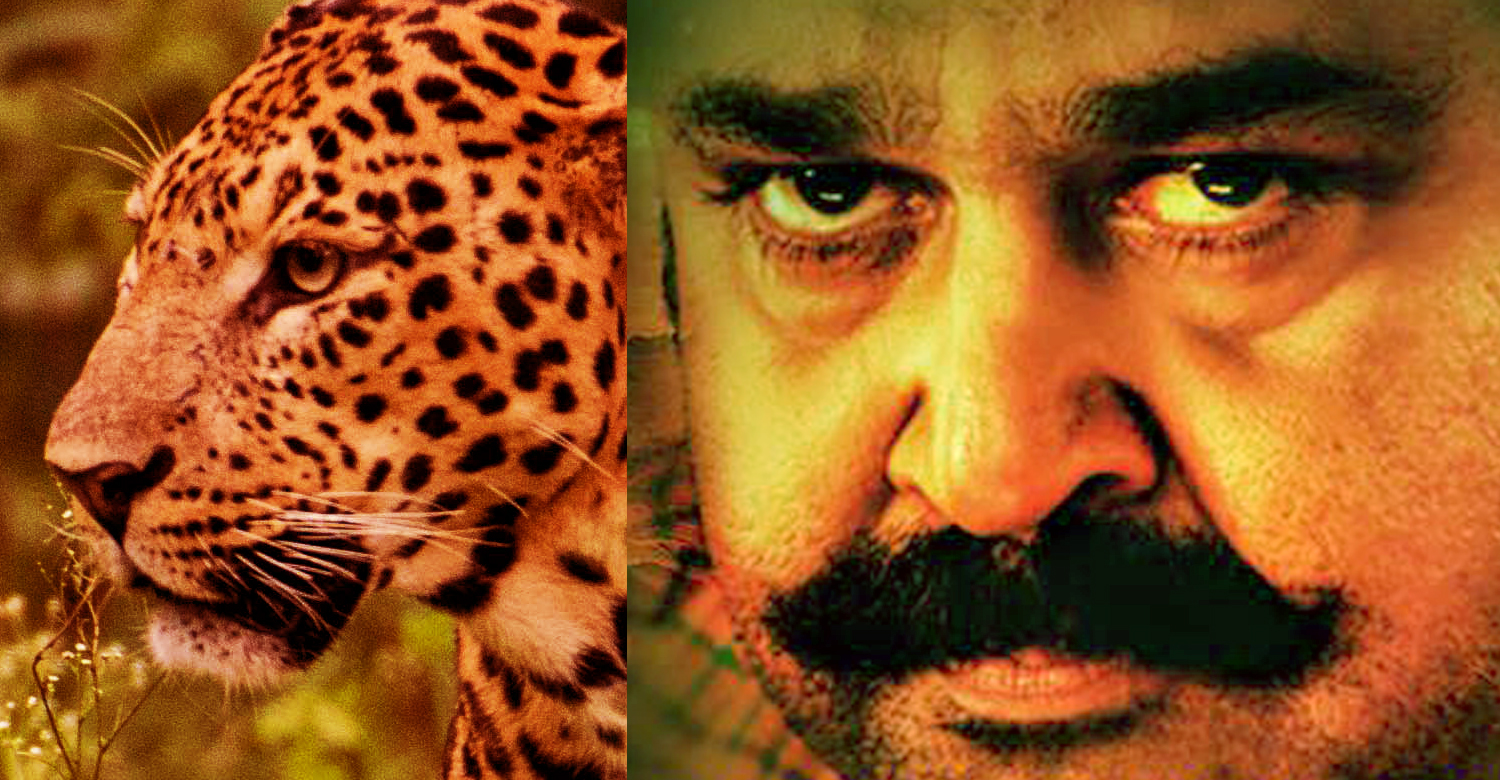 Mohanlal's fight with leopards will be shoot using almost 2 weeks