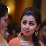 Rudra Simhasanam Audio Launch Stills-Photos