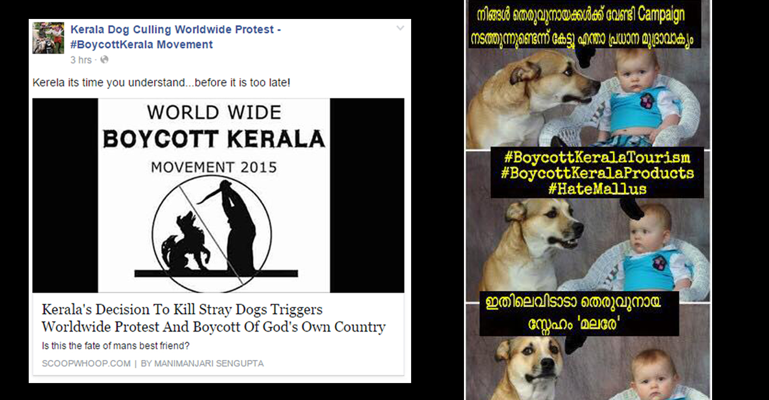 Street Dog issue in Kerala
