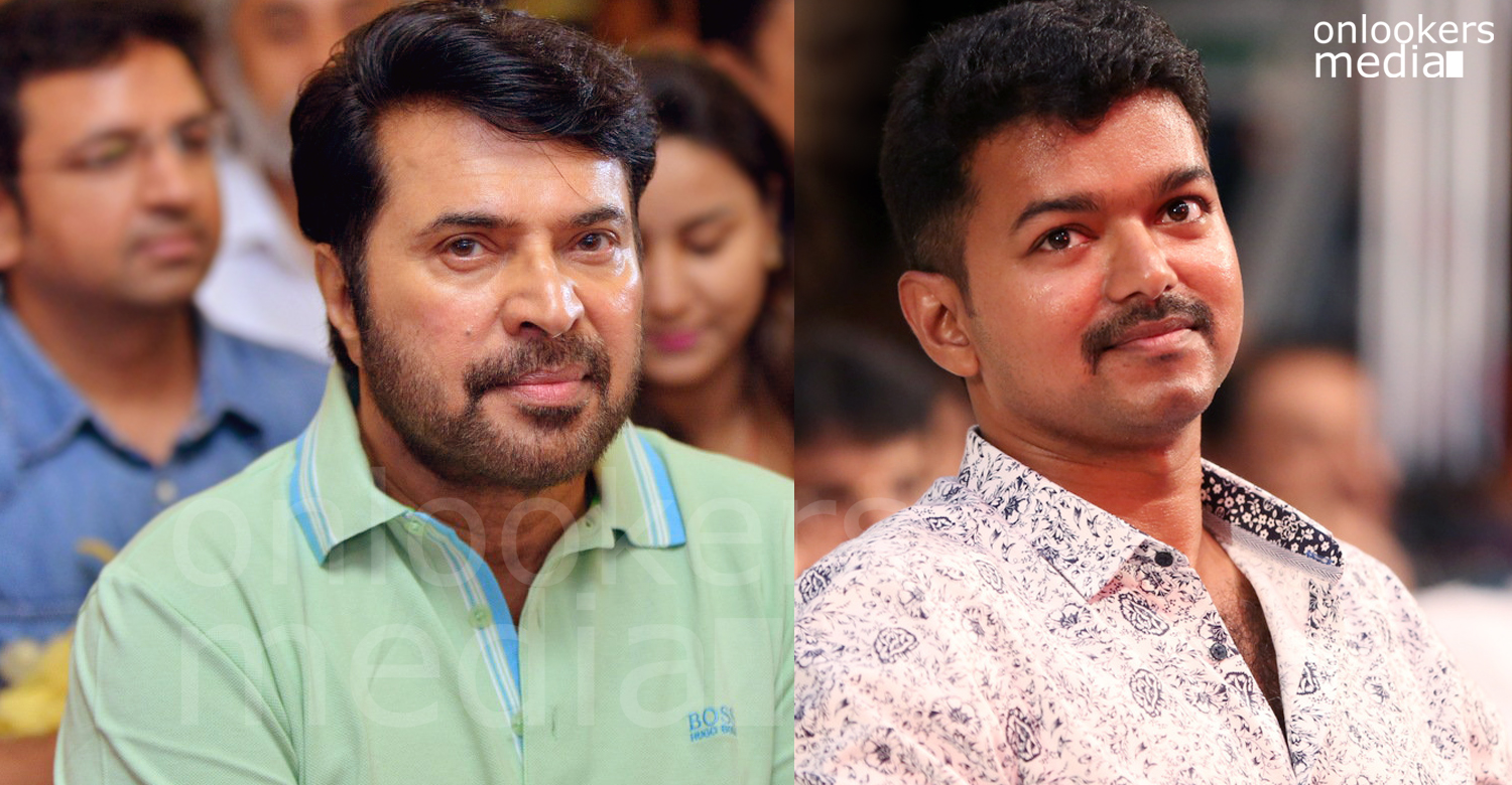 Vijay next movie, mammootty Vijay movie, latest movie news, malayalam movie news, mammootty new movies,