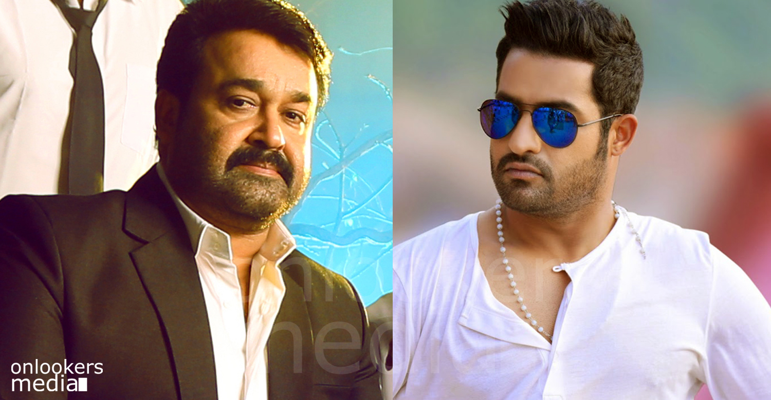 Jr NTR about mohanlal, mohanlal telugu movie, malayalam movie 2016, telugu movie 2016, mohanlal next movie