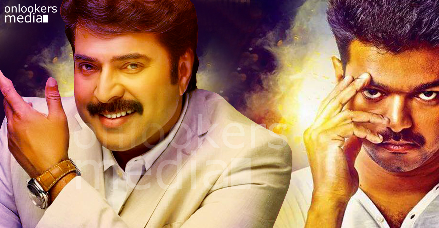 mammootty in vijay movie, mammootty vijay, mammootty tamil movie, vijay next movie, tamil movie 2016, mammootty 2016 movies