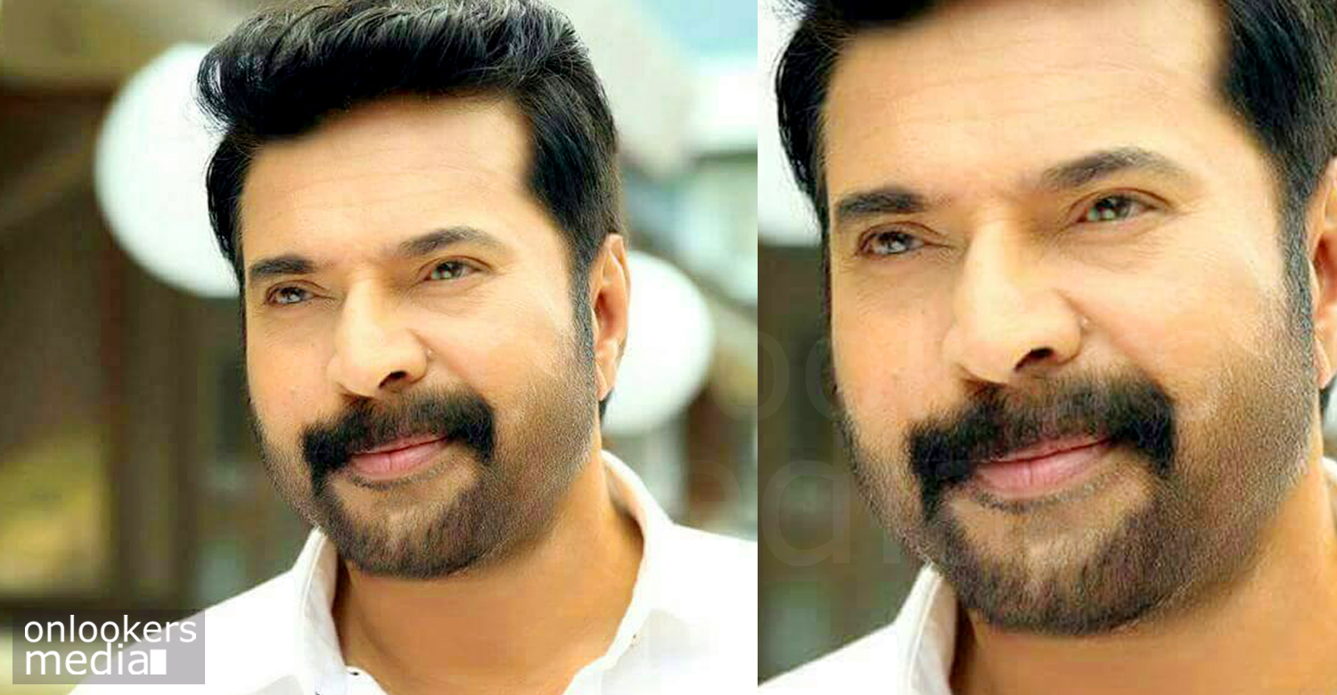 Mammootty next movie, Mammootty hit flop movies 2016, white malayalam movie, mammootty in white, white movie stills, mammootty 2016 movies
