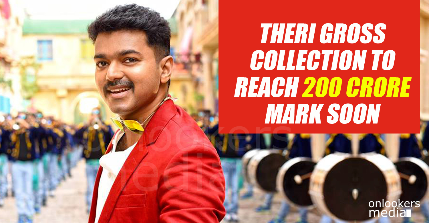 Theri 200 crore collection, Theri collection report, Theri total collection, Theri beat 24 collection, vijay Theri hit, kerala boxoffice collection