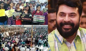 Mammootty against kerala people, Mammootty jallikattu protest, Mammootty latest news, malayalam movie 2017, Mammootty 2017 movie news, jallikattu tamil nadu situation now