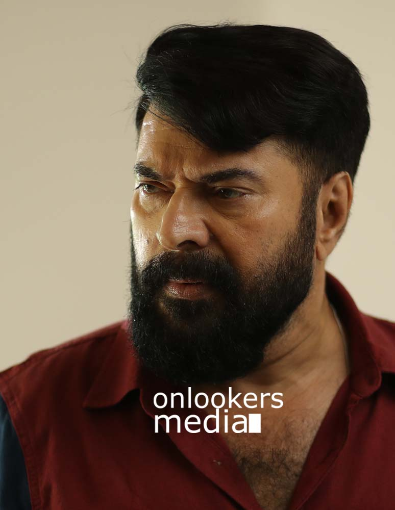 http://onlookersmedia.in/wp-content/uploads/2017/03/Mammootty-in-The-Great-Father-Stills-Photos-5.jpg