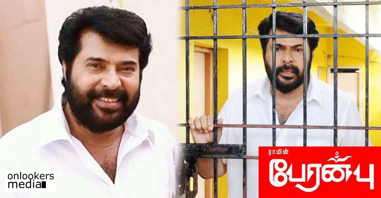 peranbu,peranbu tamil movie,peranbu movie news,peranbu movie latest news,peranbu movie release date,mammootty's tamil movie peranbu,mammootty's movie news,mammootty's peranbu movie release date,peranbu movie stills,peranbu movie mammootty's images,peranbu movie posters