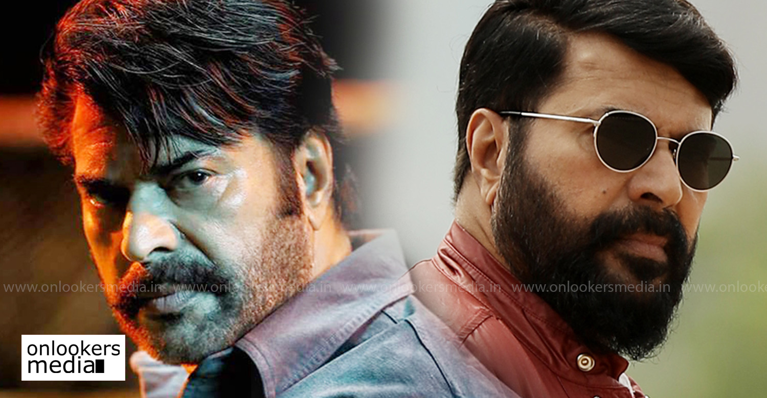 Mammootty,Megastar Mammootty,megastar,mammootty rafi new movie,mammootty's stills,director rafi,mammootty's upcoming movie,mammootty's latest news,director rafi's latest news