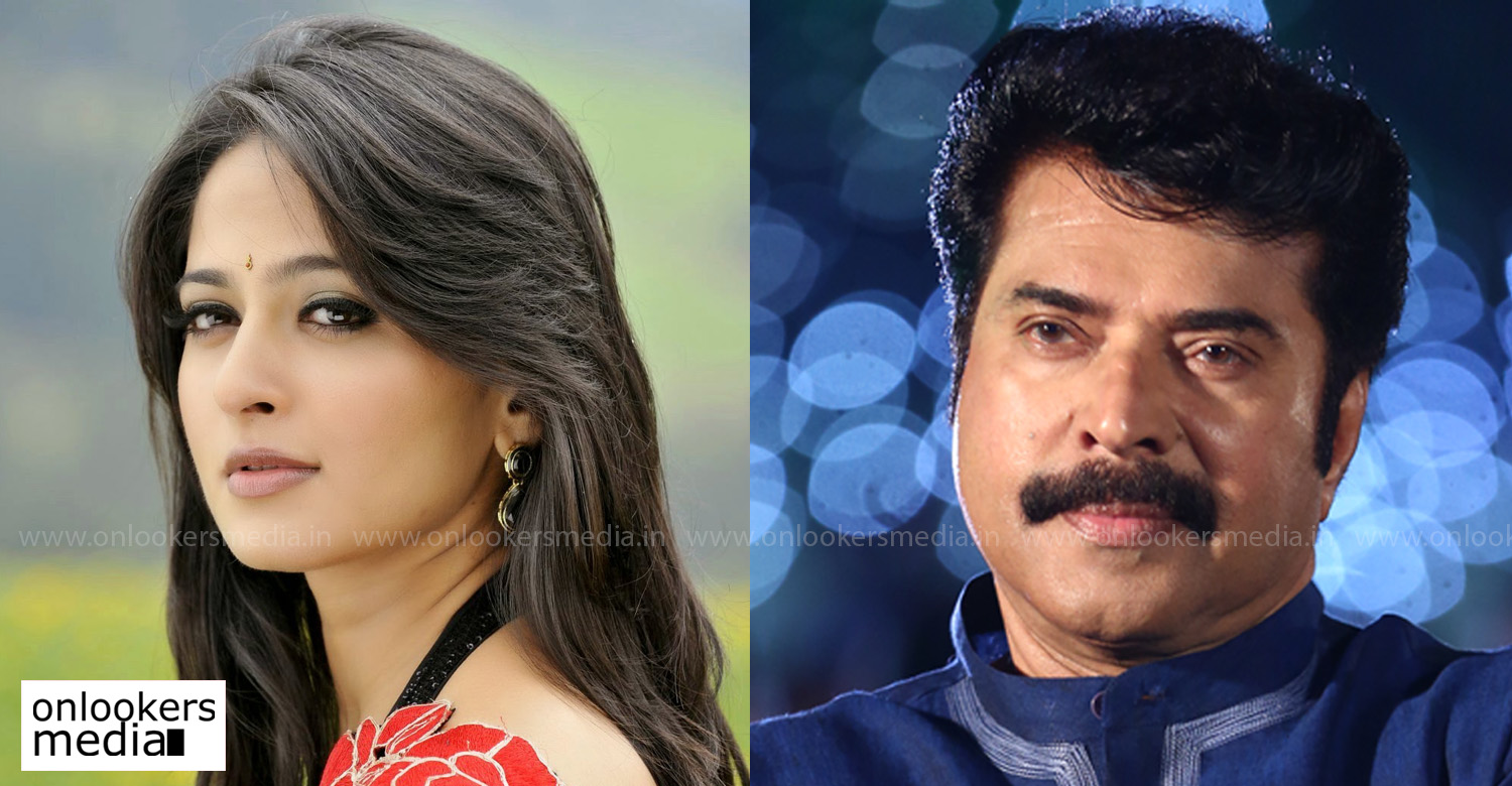 Anushka Shetty,mammootty,anushka shetty mammootty stills images,anushka shetty's latest news,anushka shetty in mammootty's new movie,mammootty anushka shetty movie,megastar mammootty,mammootty's movie news,anushka shetty's stills