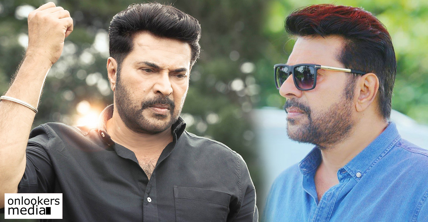 mammootty,ajai vasudev,mammootty ajai vasudev new movie,mammootty's next movie,mammootty's stills photos images,mammukka ajai vasudev movie,director ajai vasudev's new movie,mammukka's next movie,mammukka's upcoming movie,mammukka's updates