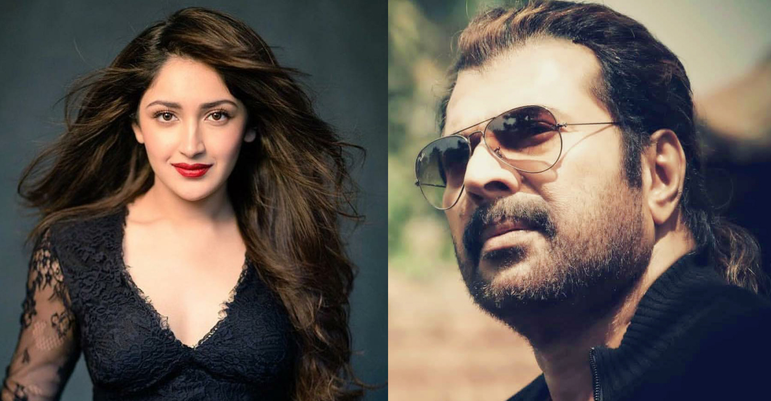 sayyeshaa,actress sayyeshaa,mammootty,megastar mammootty,sayyeshaa about Pathinettam Padi mammootty's look,mammootty's latest news,mammootty's updates,sayyeshaa mammootty latest news,sayyeshaa about mammootty,mammootty new look,mammookka news,mammookka's latest updates,mammootty's stylish look,sayyeshaa about mammootty's stylish look,pathinetam padi mammootty stylish look