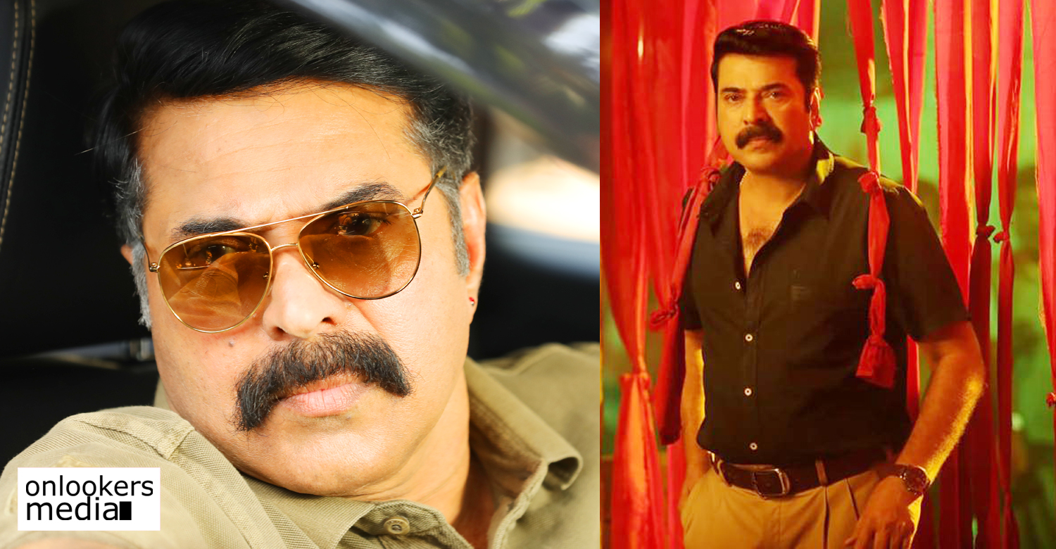 shylock satellite rights,surya tv,shylock satellite rights surya tv,mammootty's shylock satellite rights,megastar mammootty shylock,shylock film news,shylock film updates