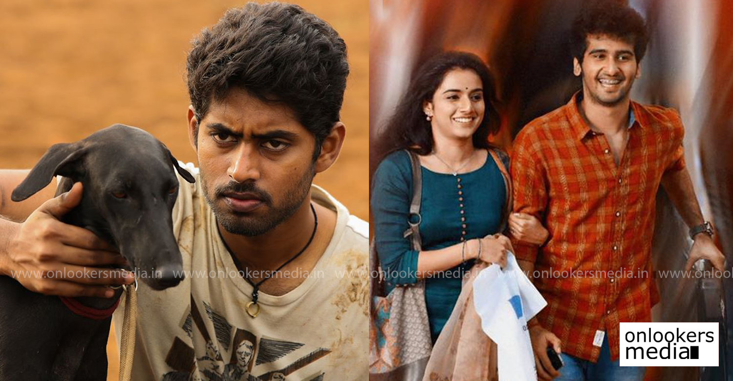 ishq,shane nigam ishq tamil remake,malayalam hit movie ishq remake,ishq tamil remake,Pariyerum Perumal fame Kathir,Pariyerum Perumal actor kathir,actor kathir in ishq tamil remake,new tamil cinema news,latest kollywood film news
