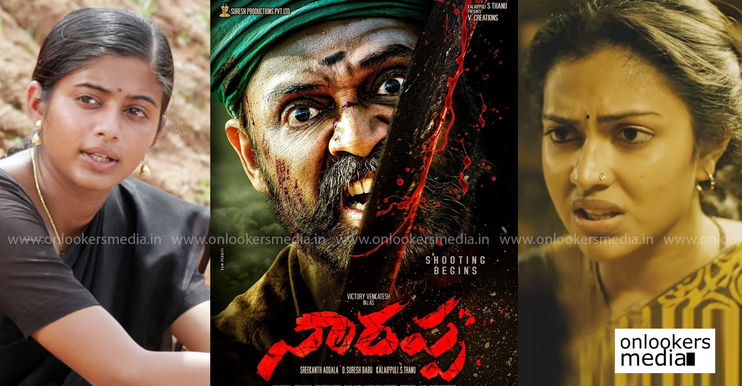 Naarappa,asuran telugu remake,amala paul,priya mani,venkatesh,Naarappa cast, actresses,amala paul latest news,actress priya mani latest news,telugu film news,latest tollywood film news