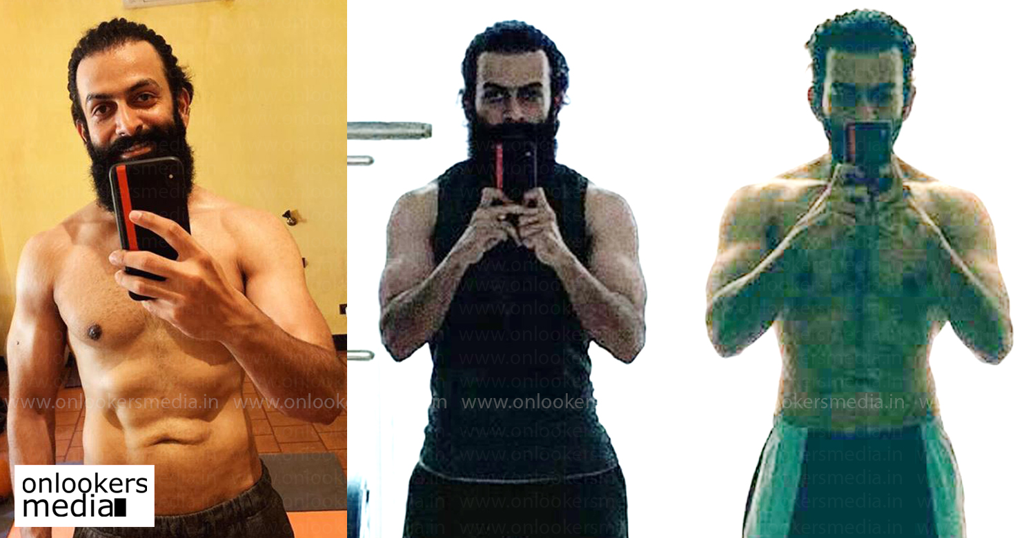 prithviraj sukumaran,actor prithviraj new gym pic,actor prithviraj workout images,actor prithviraj body,malayalam actors gym pics,malayalam actors workout images