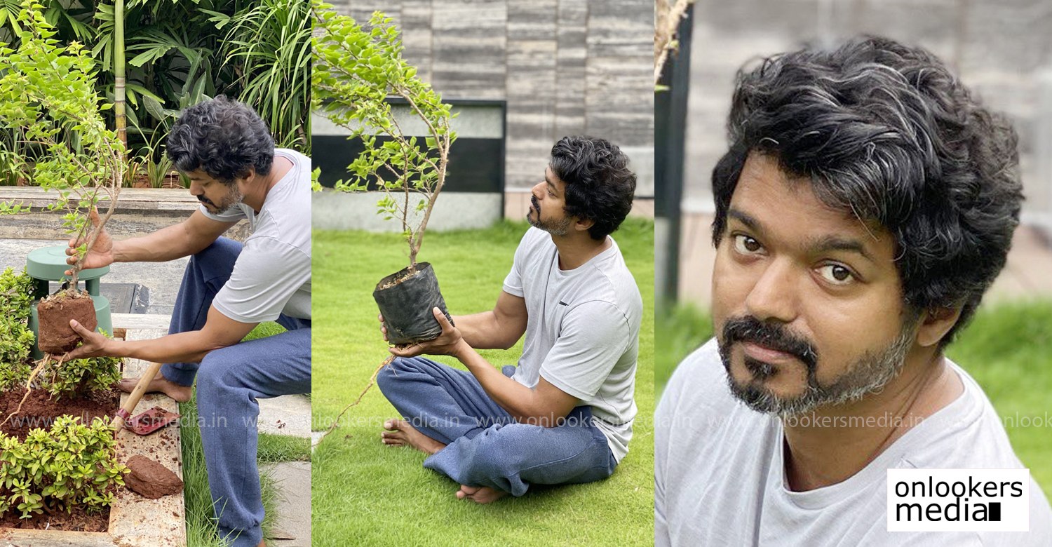 tamil film actor vijay,actor vijay latest news,actor vijay latest stills,actor vijay new look images,green india challenge,actor vijay green india challenge,tamil cinema,kollywood,latest south indian film news